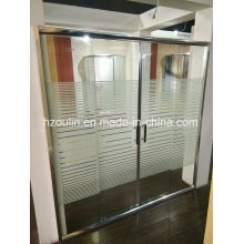 Shower Door with Line Glass