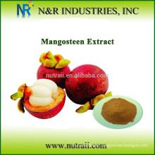 100% natural Mango powder for drink