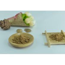 Plant Extract Grifola Frondosa Maitake Mushroom Extract