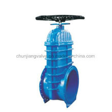 Heavy Caliber Resilient Seated Gate Valve