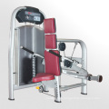 Fitness Equipment/Gym Equipment for Seatedtricpes Extension (M5-1011)