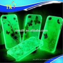 Pigmentos de brillo / brillo en el polvo oscuro / polvo fotoluminiscente para trabajos de artesanía y regalos, etc.
