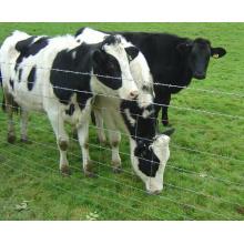 Высокопрочный тяжелый оцинкованный стальной забор для крупного рогатого скота