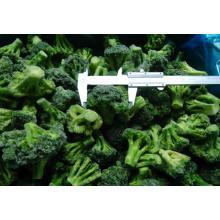 Nova colheita de brócolis congelados IQF