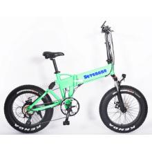 OEM & ODM 350W Hub Motor Foldable Electric Bicycle