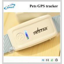 Perseguidor de GPS de las nuevas mascotas de fábrica Tk909