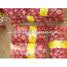 Chinese Fresh Red and Yellow Onion Exporter