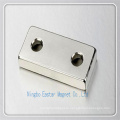 Customized N48 Neodymium Magnet Used for Motor