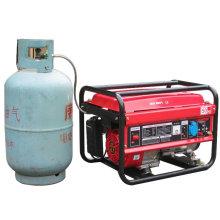 Générateur de gaz 2kw