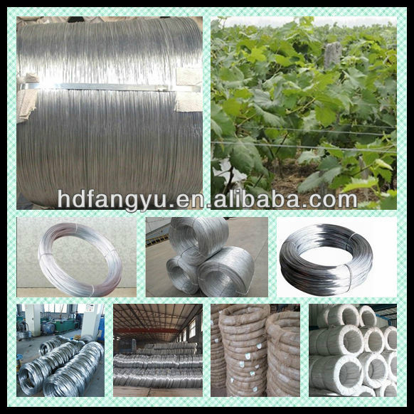 1vineyard Wire Hot Dipped Galvanized Wire For Grapes
