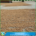 Best selling agricultural product chinese highly nutritive walnut in shell