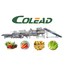 COLEAD Automatic vegetable processing line/salad/IQF salad production line
