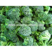 China orgânicos iqf congelados brócolis preço