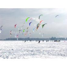 100 % Ripstop-Nylon-Gewebe für Kite