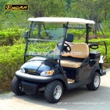 Chariot de golf électrique de 2 places Chariot de jardin buggy électrique voiture de patrouille de golf