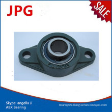 High Quality Pillow Block Bearing Ucfl203 Ucfl203c Ucfl203-11