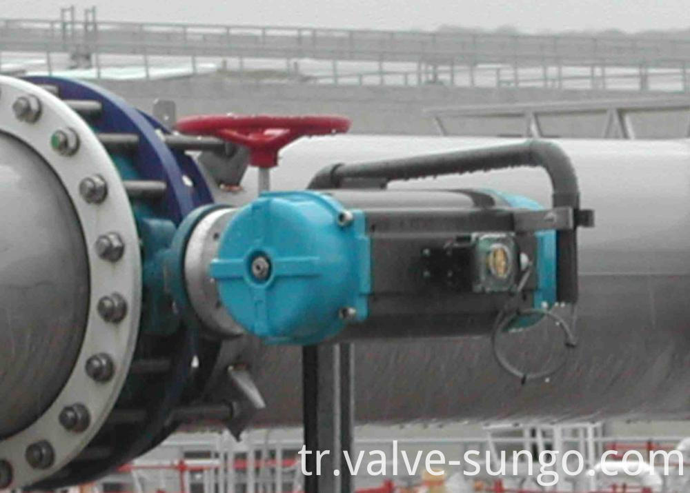 Double Direction Solf seal butterfly valve