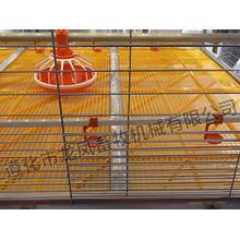 Automatic H Type Brolier Cage