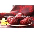 Jujube chinesische rote Datteln rote Jujube