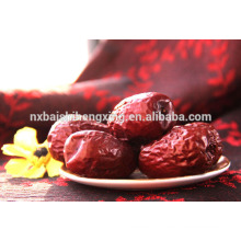 Jujube chinese red dates red jujube