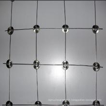 Clôture de champ de sécurité galvanisée pour cerf
