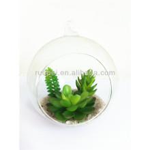 Hermosa mini planta artificial suculenta con maceta de vidrio