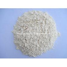 Ad déshydraté en poudre d'ail 100-120mesh
