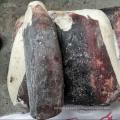 Filés de Dosidicus gigas congelados de lula sem pele à mão