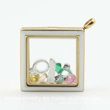 Fashion Stainless Steel Locket Pendant for Decoration (HL-847)
