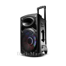 Top Sale 8 Inch Popular Bluetooth Karaoke Muitimedia Audio Speaker