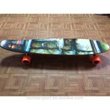 Kanadisches Ahorn Longboard Skateboard Deck komplett