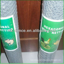 3/8 inch Hot dipped Galvanized hexagonal Poultry wire netting coop