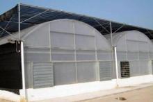 PC Sheet Greenhouse