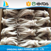 cheap and good quality frozen live squid head and squid tentacle