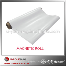 Chinese hottest sale long isotropic magnetic roll