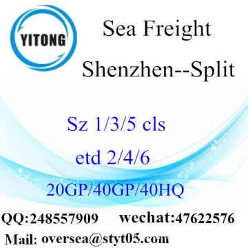 Shenzhen Port Sea Freight Shipping To Split