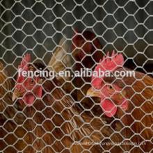 rede de arame sextavada líquida das aves domésticas