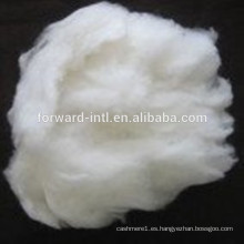 Venta directa de fábrica de fibra de cachemira con buena longitud