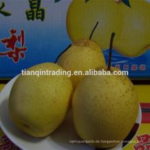 chinesische ya Birne