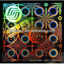 New design hologram nickel master high security number plates