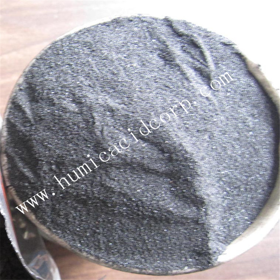 Potassium Humate Shiny Powder 2