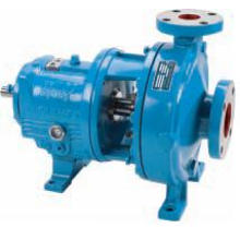 ANSI Goulds 3196 Process Bare Pump