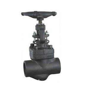 Forged Steel Bolted Globe Valve