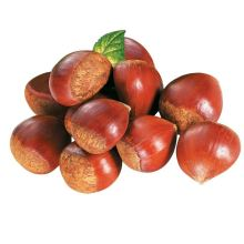 New Crop Fresh Delicious Top Quality Chestnut