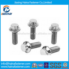 Stainless Steel 18-8 12 Point Flange Bolts