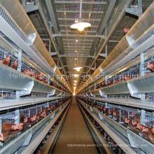 H Cage de poulet de batterie de couche de type pour l'usage de ferme