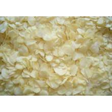 Dehydrated Garlic Flake Vegetables