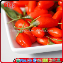 Como tomar goji berry where can i buy fresh goji berries raw organic goji berries