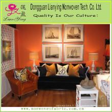 Oreillers décoratifs de bricolage pour votre canapé