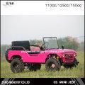 China Jeep Mini 150cc Mini Jeep 110cc